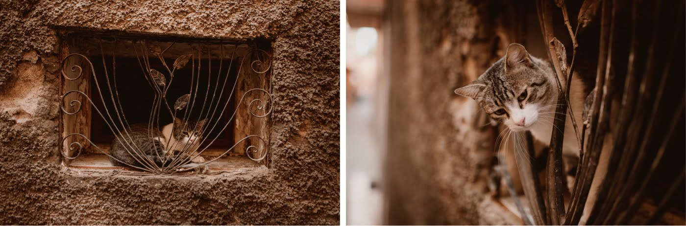 ewelina zieba marrakech sesja slubna 18
