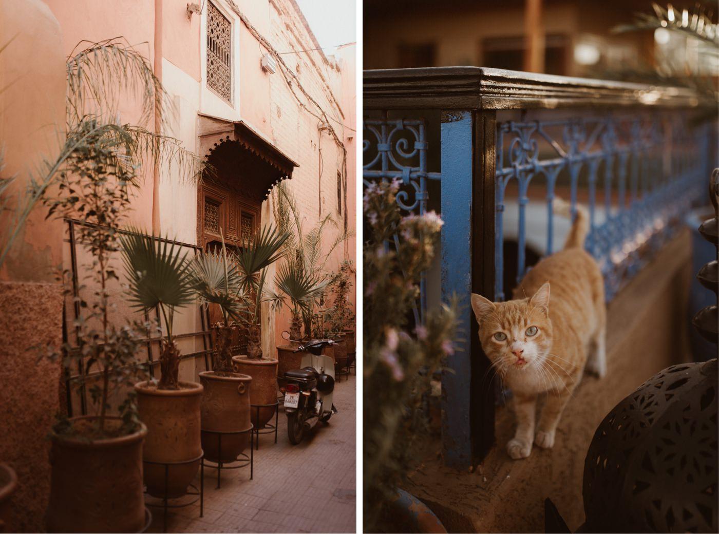 ewelina zieba marrakech sesja slubna 42
