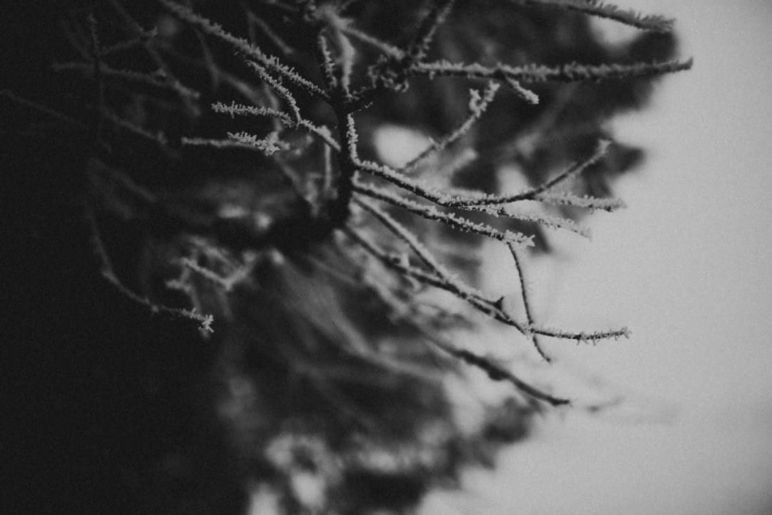 ewelina zieba sesja w tatrach zima 38