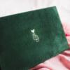 ewelina zieba pudelko na zdjecia butelkowa zielen ze zlota grafika 01 1
